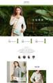 小小包 大世界-女包、女鞋、女装等行业专用旺铺专业版模板
