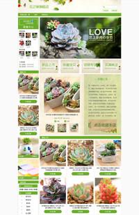 [B404-1] 基础班:肉多多的小花园-多肉植物、园林、盆栽行业通用旺铺专业版模板