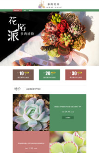 [B968-1] 新种植物,萌萌哒-家居多肉植物)行业通用旺铺专业版模板